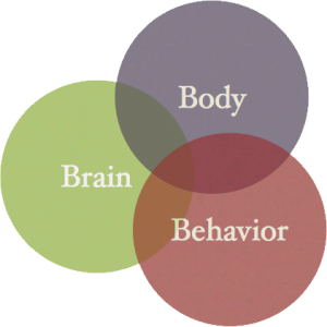 body brain behavior