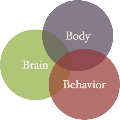BodyBrainBehavior